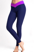 LEGS Леггинсы спортивные L1447 LEGGINGS SPORT BELT DARK BLUE/FUXIA